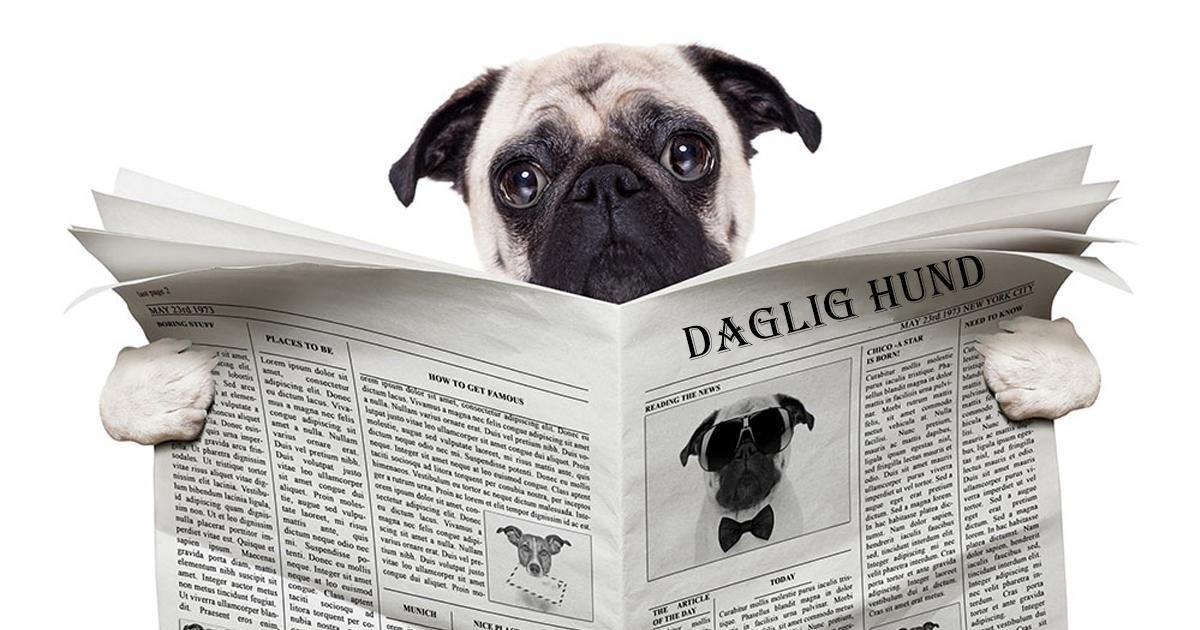 Nyhedsbrev Alt for hunden